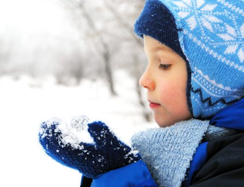 Lessons of Winter: Snow and Ice